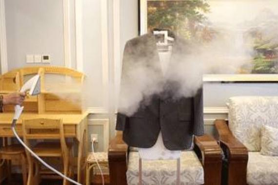 五档调节,超大蒸汽,卓力家用挂烫机熨烫省时省力